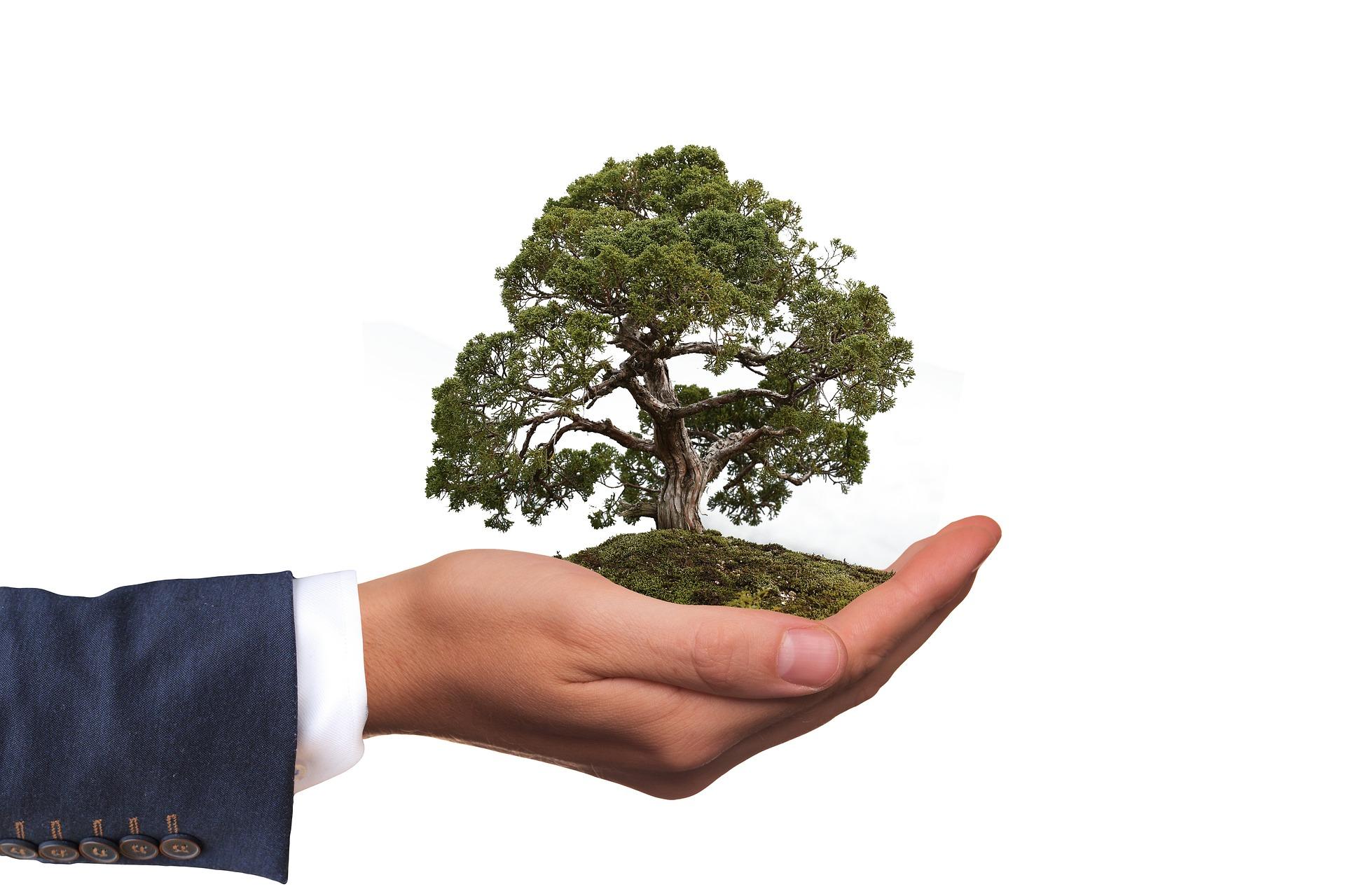 Eco-Friendly Online Shops Malta